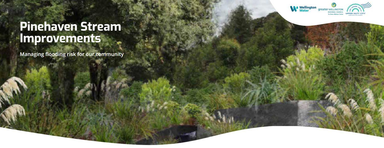 Pinehaven Stream Flood Improvement Works cover image