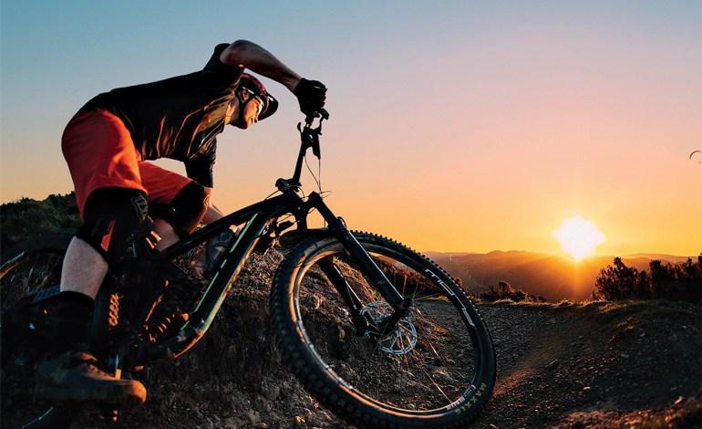 Wellington regional trails of the future cover image