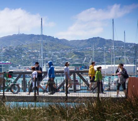 Wellington is growingcover image.